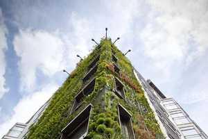 Urban Gardening (UPDATE)