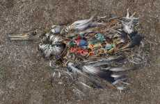 Decomposing Birdography