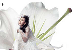 NE·TIGER Launches Gorgeous Wedding Dresses