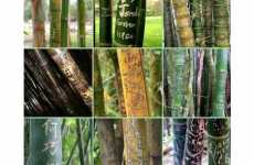 50 Sustainable Bamboo Creations - From Woodsy PC Peripherals to Eco-Fiber Blends
