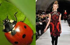 35 Ladybug-Like Fashions