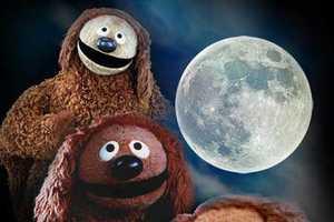 Three Wolf Moon T-Shrit Parodies are the Best Stocking Stuffers (ever)