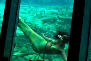 The Town of Weeki Wachee Puts on a Fantastical Underwater Performance