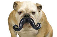 Incognito Dog Toys - The Humunga Stache Makes Your Dog Look Silly