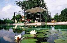 Chemical Free Swimming Pool Ponds are Eco Friendly