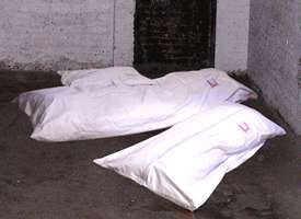 Body Bag Bean Bag Chairs