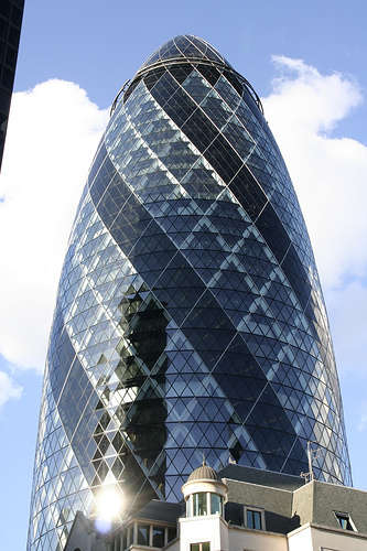 Biomimetic Architecture - The Gherkin and The Swiss Re Tower in London