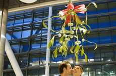 The Heathrow Mistletoe is the World's Biggest
