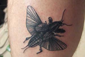 Extinked Tattoo Exhibition Spotlights Environmental Conservation