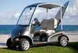 $20,000 Golf Carts