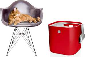 Here's the Scoop on the Cat-Approved ModKat Litter Box