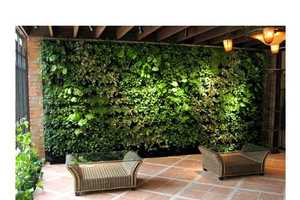 From Green Walls to Extraterrestrial Horticulture
