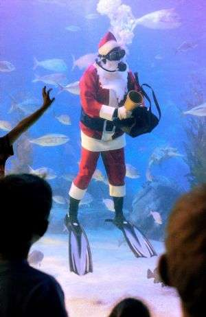Scuba Diving Santas
