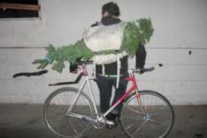 Treesbybike Takes a Greener Road to Holiday Tradition