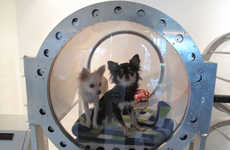 Oxygenated Pet Relaxers - A New Oxygen Chamber for Pets Helps You Pamper Your Pooch