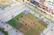 Urban Awareness Gardens - Landgrab City in Hong Kong Teaches Lessons in Sustainability
