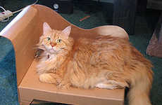 Recycled Feline Loungers - DIY Cardboard Cat Chaise is a Catastic Idea
