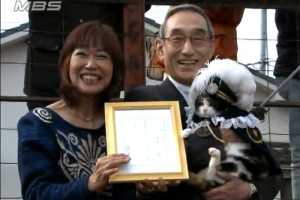 Japanese Cat Promoted from Stationmaster to Corporate Executive