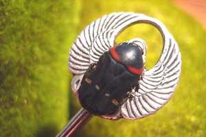 Etsy Artist Crafts Earrings, Necklaces, & Pendants Using Real Insects