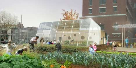 Edible Schoolyards - PS216 in New York is Getting a Nutritous Makeover