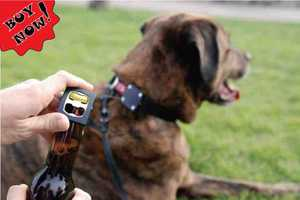Bark4beer Dog Collar is the First Four-Legged Bottle Opener
