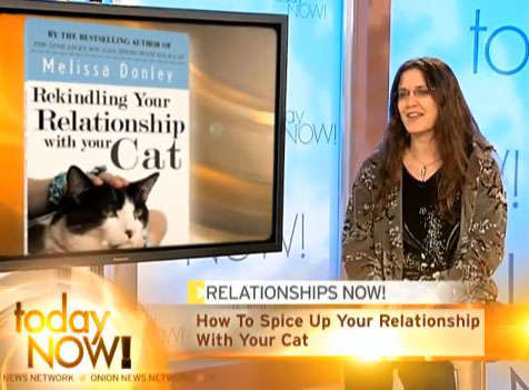 Cat Owners Counseling