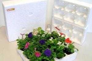 Cradle to Cradle Certified BioFoam for Greener Packaging