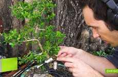 Miniature Tree Melodies