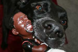 Michael Vick Dog Chew Toy Raises Animal Abuse Awareness
