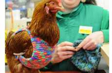 Little Hen Rescue Dresses Birds in Sweaters