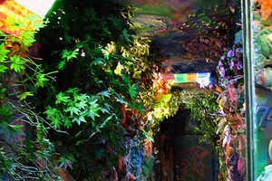 Fairytale Land Art Installation in Kiev
