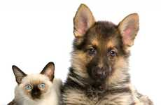 Customized Pet Food