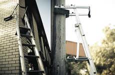 Reptilian Ladders