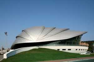 The Dalian Shell Museum Houses Calcified Formations