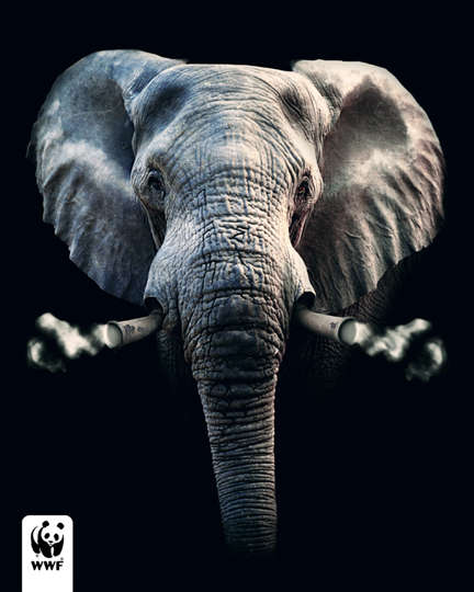 Toxic Animal Ads - The WWF Evollution Campaign Looks to Send a Clear Message