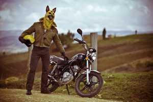 'Sucio Perro' by Natalia Hoyos Features a Biker Big Bad Wolf