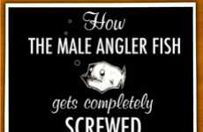 Informative Fish Cartoons - The Witty Tale of 'How the Male Angler Fish Gets Completely Screwed'