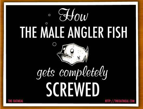 How the Male Angler Fish Gets Completely Screwed
