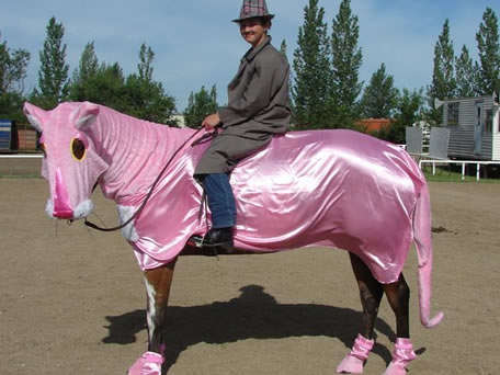 Equine Dress-Up