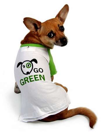 Green Dog Cleaning
