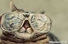Too-Cool Feline Blogs - 'Hipster Kitty' Documents the Life and Times of Scenester Cats