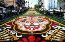 Flowering Carpets