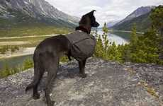 Puppy-Loving Nature Blogs - 'Dogs and Great Views' Combines Man's Best Friend & Wanderlust