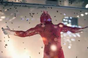 Tomas Gabzdil Libertiny's Jesus Statue Made by Bees
