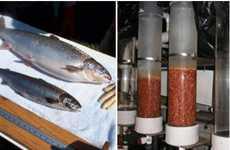 Fishy Genes