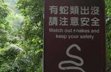 """Chinglish"" For Beijing Olympics"