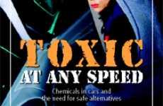 Toxic Interiors