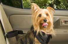 Cruisin' Canine Protection - Pet Seat Belts are Safety Harnesses for Animals Riding in Cars