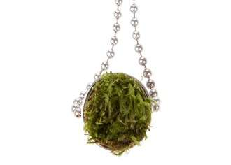 Potted Plant Necklaces - The Growing Jewelry House Collection Features Real Moss