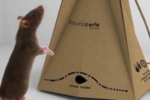 Clever Eco-Friendly Rat Trap Design Has a Few Flaws